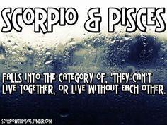 Scorpio and Pisces Scorpio And Pisces Relationship, Pisces Traits, Scorpio Zodiac Facts, Zodiac Relationships, Pisces Quotes, Zodiac Horoscope, Relationship Compatibility, Virgo Zodiac, Astrology