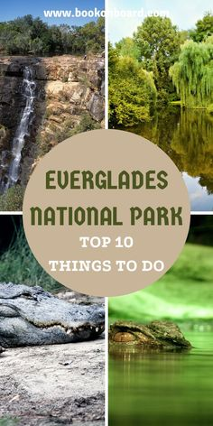 One of the most popular ecotourism destinations in the United States is the Everglades National Park. Here are the 10 best things to do everglades Florida #theevergladesflorida… Florida National Parks, Everglades National Park Florida, American National Parks, Florida Vacation, Florida Travel, Travel Usa, Florida Keys, South Florida, Key Biscayne Florida