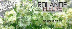 Rolande fleuriste aux Halles de Narbonne http://www.rolande-fleurs-halles-narbonne.com/halles-de-narbonne.html