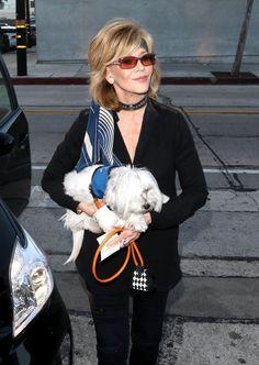 Jane Fonda is seen on June 21, 2015 in Los Angeles, California.