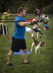 Owners, pets hounded to shape up at boot camp. At Thank Dog! Bootcamp in Arlington, Va., Tucker Berry pulls on resistance weight bands as Tugboat stands by.