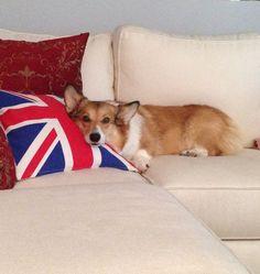 Princess and her pillow