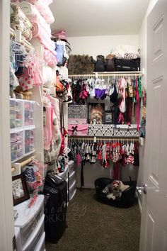 Superieur They Have Their Own Closet? The New Yorkie Closet ♡ Open For Business Now ♡