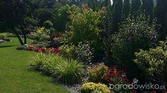 Mój ogrodowy pamiętnik - strona 805 - Forum ogrodnicze - Ogrodowisko Aga, Plants, Plant, Planets
