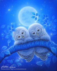 Beautiful Owl, Animals Beautiful, Cute Animals, Owl Photos, Owl Pictures, Cute Owls Wallpaper, Owl Artwork, Owl Patterns, Owl Bird