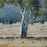 Drought Gums - Glen Davis - 60 x 45 © Copyright John Wilson Painting Gallery, Art Gallery, Glen Davis, Watercolors, Watercolor Paintings, Wilson Art, Australian Artists, Blue Mountain, Any Images