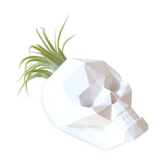 My design inspiration: Geo Skull Tiny Planter on Fab.