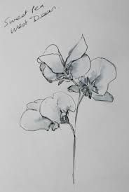 Image result for sweet pea tattoo