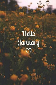 Cause this month january mybe