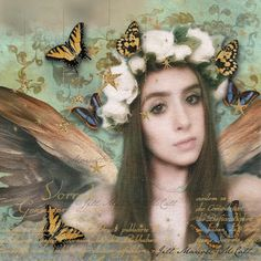 Feathers & Flight ~Jill Marcott-McCall~Mixed Media & Digital Artist: A Butterflies Heart