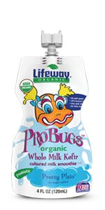 Pretty Plain Organic Whole Milk ProBugs Kefir - Lifeway Kefir