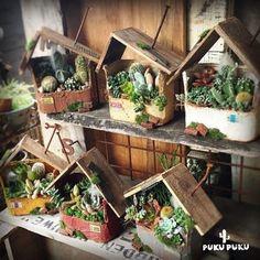 Succulent Arrangements, Cacti And Succulents, Planting Succulents, Cactus Plants, Miniature Crafts, Garden Ornaments, Flower Boxes, Garden Planning, Garden Projects