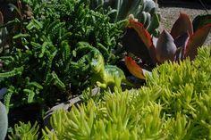 BlondeMafia: Fairy Garden