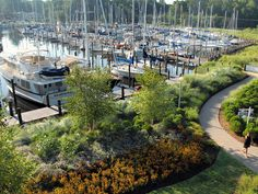 Landscaping filters and reduces stormwater runoff into our wildlife habitat areas, thereby minimizing the need for dredging.