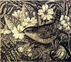 Robin Tanner (English, 1904-1988). Wren and Primroses. 1935. Etching.