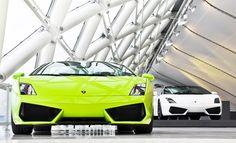 Lamborghini Rental in French Riviera. Pickup in Côte d'Azur or we deliver at Paris, Nice Airports, Hotels or Yachts. Lamborghini Rental, Lamborghini Gallardo, Paris Nice, Most Expensive Car, Latest Cars, Amazing Cars, Awesome, Car Rental, Car Car