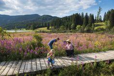 Die beliebtesten Ausflugsziele in der Region Mountains, Nature, Travel, Pond, Tourism, Road Trip Destinations, Traveling, Naturaleza, Voyage