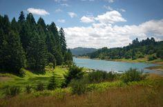 Hagg Lake (sain creak pavilion)