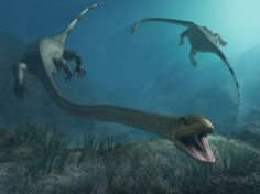 """The term """"prehistoric reptiles"""" group is intended for a broad category of animals which helps distinguish the dinosaurs from other prehistoric reptiles. Most of the prehistoric reptiles are often. Reptiles, Mammals, Lake Monsters, Sea Serpent, Dinosaur Art, Extinct Animals, Prehistoric Creatures, Cryptozoology, Weird Creatures"""