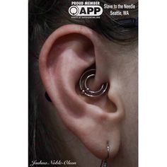 Fresh double daith with #Anatometal bead rings @slavetotheneedle #slavetotheneedle #ballard #seattle #safepiercing #appmember  (at Slave to the Needle)