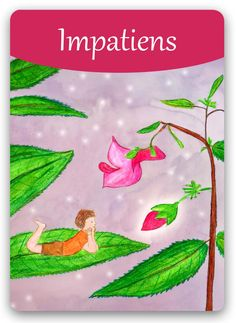 "Bach Flower Cards [Impatiens] - Impatiens personality is quick-thinking and wants to work at a fast pace, feels the urge to just ""do it themselves"" rather than suffer the frustration of watching someone else work slowly or not up to their standards. When in the positive state, Impatiens people have great capacity for empathy and patience. They still possess quickness of mind, intelligence, and decision-making, but they put them all to good use in the service of others as well as themselves."