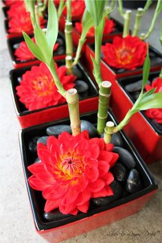 dahlia & luck bamboo centerpiece - change out the red flower for a purple one?