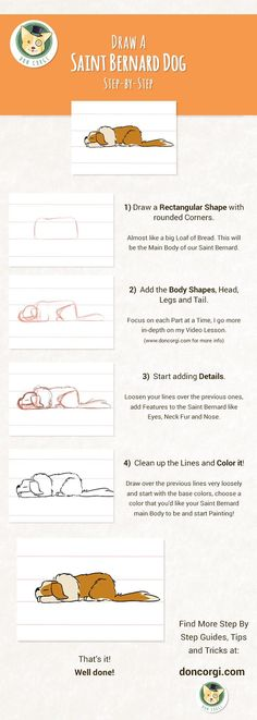 How to Draw Dogs - Draw a St. Bernard Step by Step