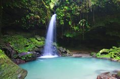 The Emerald Pool, Dominica.