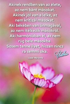 Motto, Happy Life, Karma, Quotations, Motivational Quotes, Feelings, Words, Hungary, Scrapbook