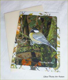 """Carte double """" Une petite mésange... """" de Céline Photos Art Nature : Cartes par celinephotosartnature"""