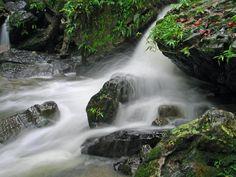 El Yunque Rainforest - Puerto Rico    been here too.