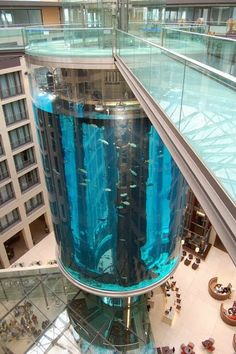 The AquaDom in Berlin, Germany