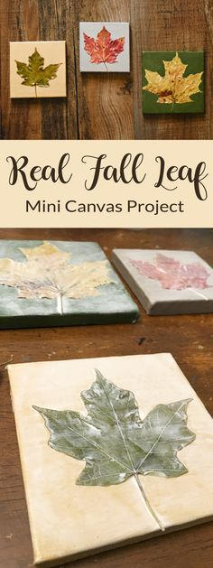 Real Fall Leaf Mini Canvases Preserve Fall Leaves in Cute little works of art!