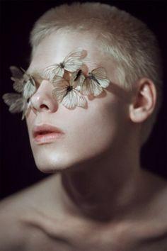 Silent sighs and butterflies