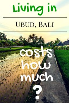 So you read our beginners guide to living in Ubud and you've decided to come for an extended stay? What will the cost of living be like for a month in Ubud? You might be surprised. We reveal everything with our February 2015 breakdown of all our living costs.