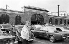 Paul Newman flipping the bird, 1967