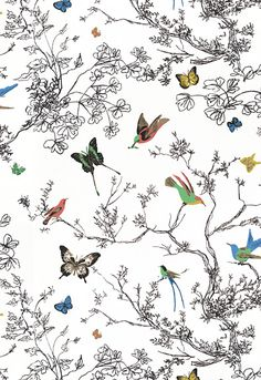 Birds and Butterflies Multi on White Fabric SKU - 174760