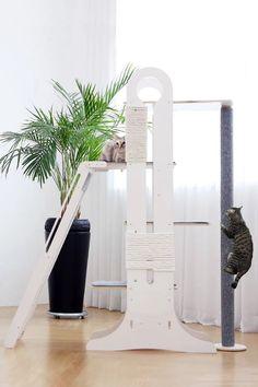 Cat in the Hat Laminated 3pc Door Sign