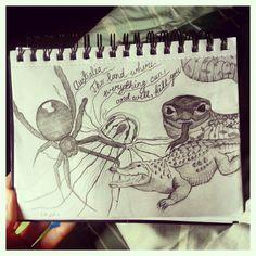 #australia #spider #snake #jellyfish #crocodile #pencil #sketch #doodle #illustration