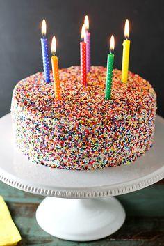 Vanilla Bean Birthday Cake | girlversusdough.com @stephmwise