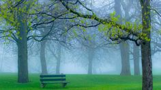 Good-Morning-Fog-Wallpaper-Hd-Nature-Is-Wallpapers-Fog-Backgrounds-Wallpaper-1280×720