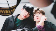 996560335A267625344E0B (650×361) Woozi, Mingyu Wonwoo, Seungkwan, Dino Seventeen, Mingyu Seventeen, Vernon, Hip Hop, Kpop Couples, Korean People
