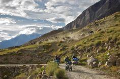 up in the Zanskar, hills by Vinod Panicker