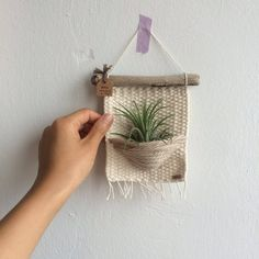air plants woven wall hanging, woven wall hanging, home decor Luftpflanzen gewebt Wandbehang gewebt Wandbehang Wohnkultur Hanging Plant Wall, Woven Wall Hanging, Hanging Fabric, Hanging Basket, Hanging Art, Tapestry Weaving, Air Plants, Cactus Plants, Etsy