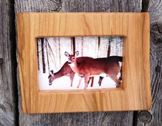 Wood picture frame, 4 x 6 photo frame, rustic, live edge, wildlife photo, handmade, country primitive, cherry, deer, wall decor.  This rustic