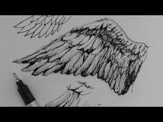 Pen & Ink Drawing Tutorials | How to draw wings - YouTube