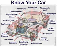 Know Your Car [infographic] - US Trailer can sell used trailers in any condition to or from you. Contact USTrailer and let us rent your trailer. Click to http://USTrailer.com or Call 816-795-8484