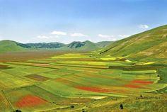 **Valnerina (valley of poppy fields and lavendar) - Cascia, Italy