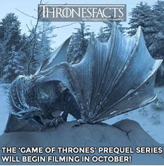 Game Of Thrones Prequel, Game Of Thrones Facts, Game Of Thrones Dragons, Game Of Thrones Quotes, Game Of Thrones Funny, Game Thrones, Winter Is Here, Winter Is Coming, Valar Dohaeris