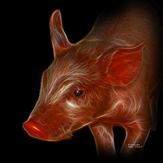 Piglet 1716 F, James Ahn, Digital art.